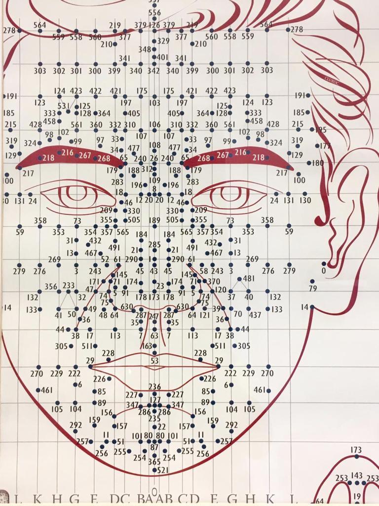 Schéma de différents point de réflexologie faciale